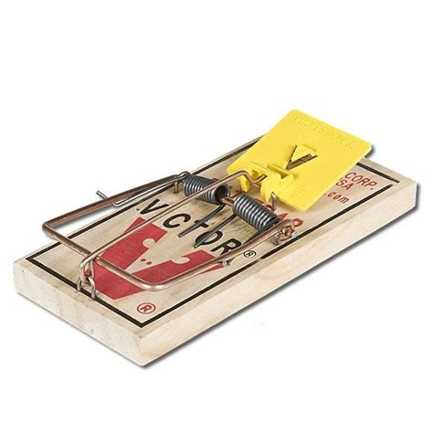 mouse benching mouse trap victor rat trap pro m326