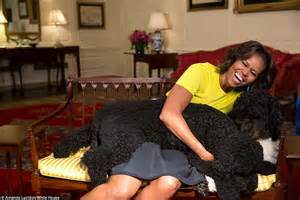 white house dog sunny white house s year in pictures proves there s plenty of time for fun for the obamas