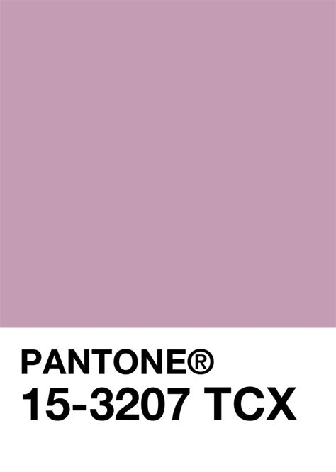 color of the day 510 065 284 702 km 2 pantone march 8th color of the