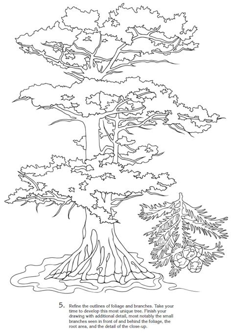 nature scapes coloring pages welcome to dover publications