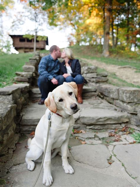 engagement photos with dogs 15 oh so engagement photos with dogs