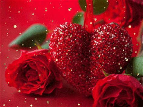 imagenes de rosas te quiero mucho hermosas rosas para ti te quiero mucho