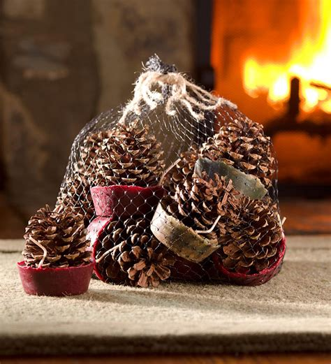 Pine Cones For Fireplace by Wax Bottom Pine Cone Starters The Green