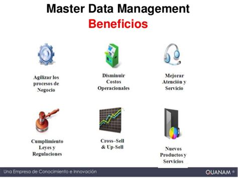 master data management master data management