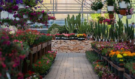 giardini di veio horti di veio vivaio roma nord manutenzione giardini