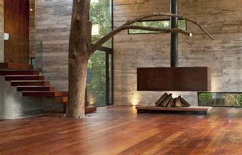 house   forest  trees interacting  living