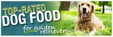 best food for golden retriever puppy food comparisons for your golden retriever dogs