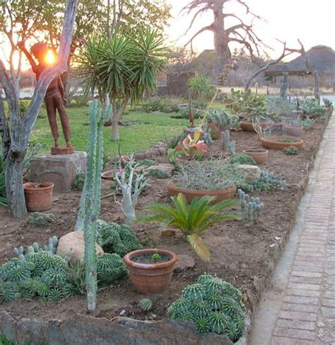 do it yourself desert landscaping best desert landscaping ideas for clever quot low maintenance