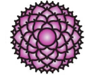 Crown Chakra Lotus Sahasrara