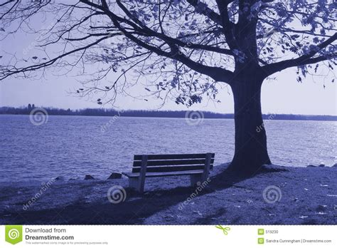 lonely bench lonely bench stock photo image 519230