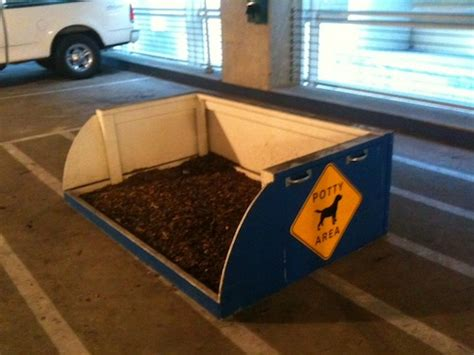 potty area pet relief areas at dallas fort worth international airport dfw terminal d