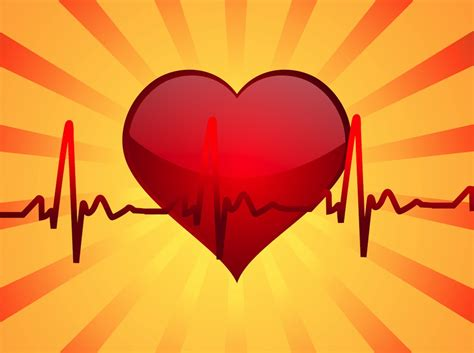 heartbeat vector art graphics freevectorcom