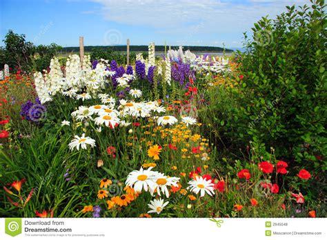 amazing backyard gardens amazing flower garden royalty free stock photos image 2945048