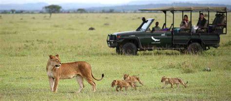 best safari park serengeti park best safari tanzania holidays