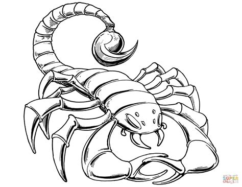scorpio color prehistoric scorpion coloring page free printable