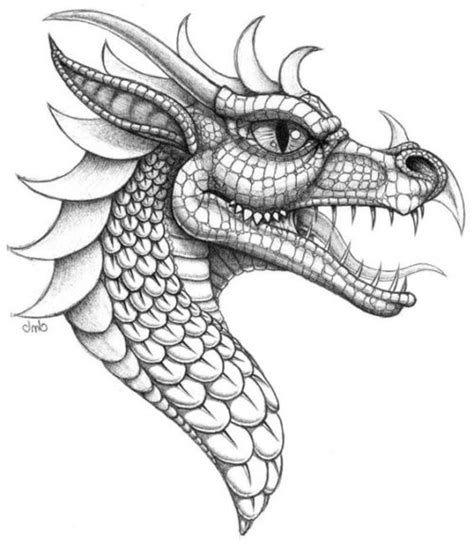 dibujos realistas y fantasticos 95 im 225 genes de dragones fant 225 sticos todo im 225 genes