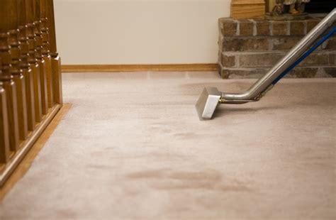 On Carpet Steam Cleaners   Carpet Vidalondon