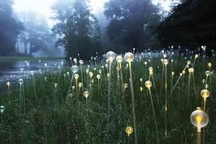 Botanic Garden Lights Bruce Munro Lights Up The Atlanta Botanical Garden With Of Fiber Optics Atlanta Magazine