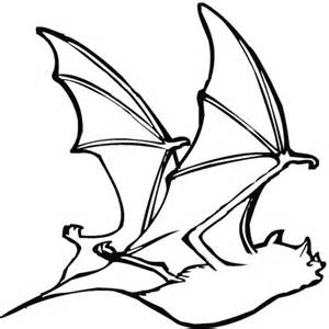 bat  coloring page  printable coloring pages
