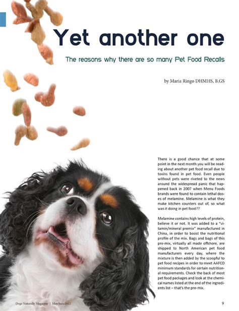 articles on dogs yet another one recall article from dogs naturally magazine by ringo carna4