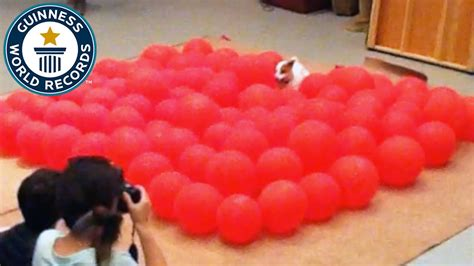 fastest time to pop 100 balloons by a guinness world