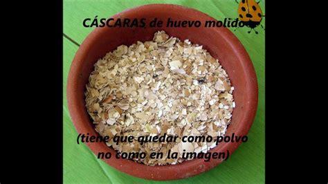 alimento para pitbull f 193 cil alimento para perros gatos croquetas y en pasta