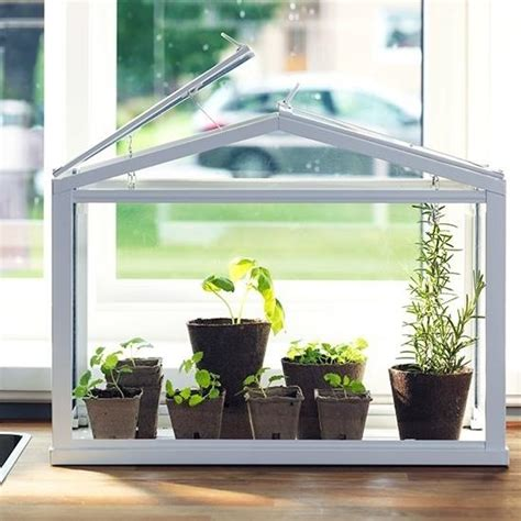 Window Sill Greenhouse Inspiration Food Tool Friday Grow Fresh Herbs Veggies Indoors With A Tabletop Greenhouse 171 Food Hacks