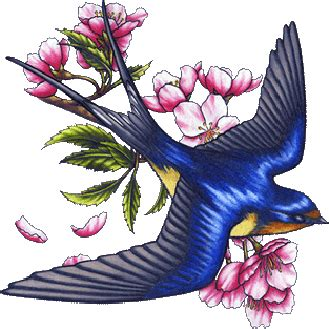 diving swallow tattoo let s keep it