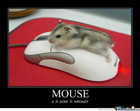 Mouse Memes - funny mouse memes pictures to pin on pinterest pinsdaddy