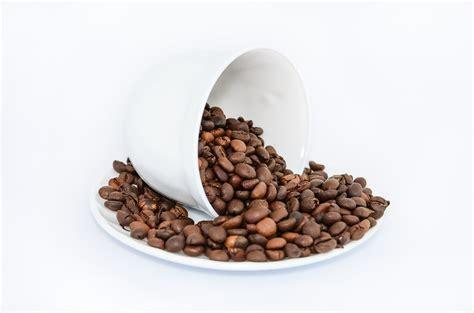 kaffee gegen geruch tipps und tricks gegen schlechte ger 252 che