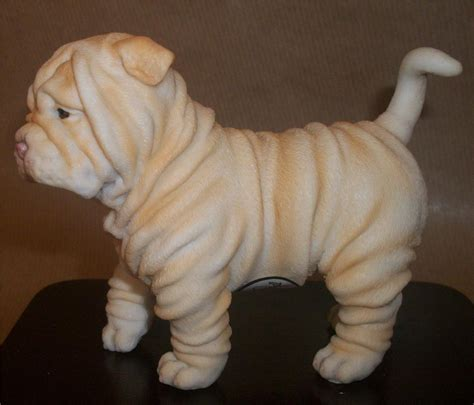 shar pei puppies blue sharpei buy dogs