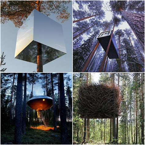 tree hotel sweden why i love scandinavia the culture map