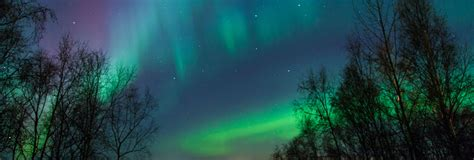 aurora borealis northern lights id 105689 buzzerg cruises packages cruise nation