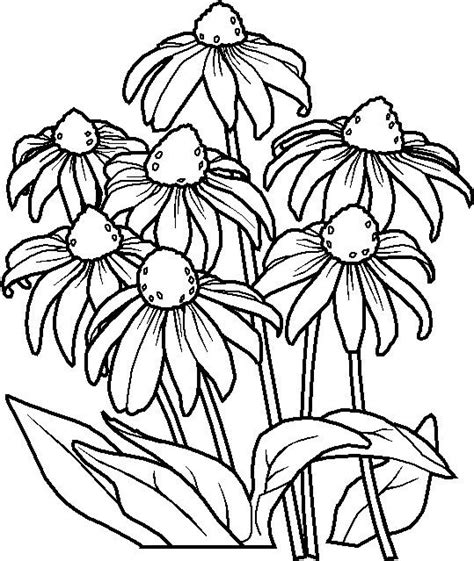 flower mosaic coloring page black eyed susan miscellaneous pinterest coloring