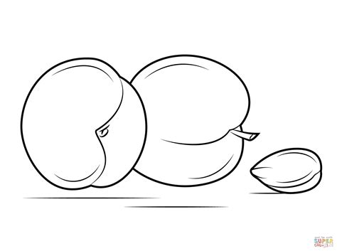 two apricots and seed coloring page free printable