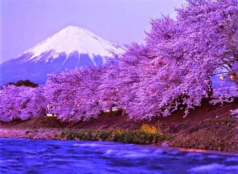 wallpaper pemandangan alam di jepang gambar pemandangan terindah di jepang 187 foto gambar terbaru