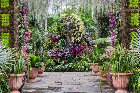 Ny Botanical Garden Orchid Show New York Botanical Garden The Orchid Show Thailand The Culture Concept Circle