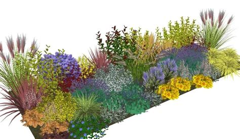 Garden Border Planting Ideas 17 Best Images About Evergreens On Gardens Sun And Privacy Hedge