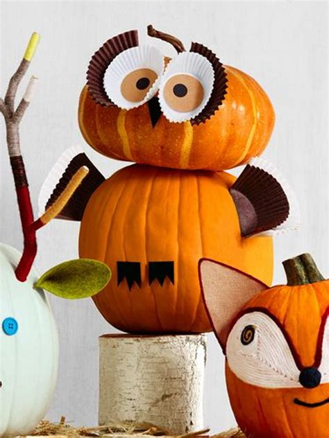 pumpkin owl back gt gallery for gt masked owl