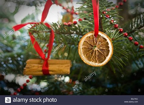 traditional christmas tree decoration comprising dried