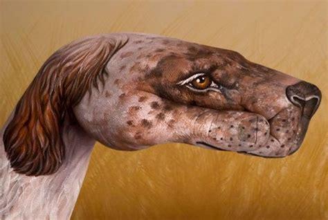 imagenes artisticas de animales 40 fotos de animales pintados en las manos de personas