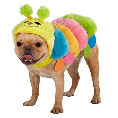 petsmart costumes that s one caterpillar from top paw 174 petsmart 13 59 monstercute