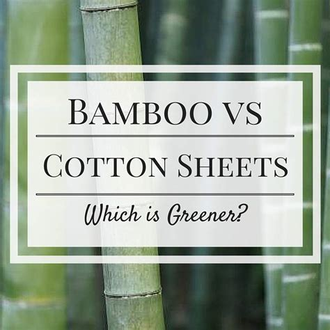 bamboo sheets vs cotton bamboo vs cotton sheets the best organic lifestyle