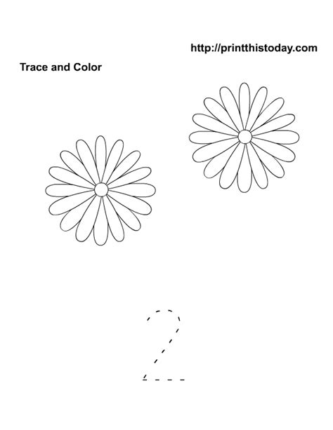 printable worksheets about flowers free printable spring flowers math worksheets for preschool