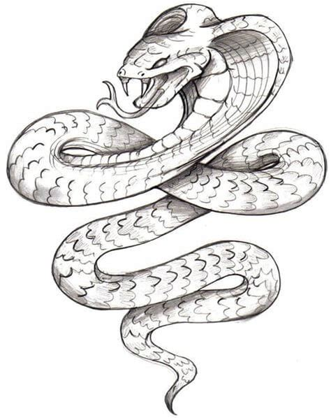 snake tattoo designs the body is a canvas