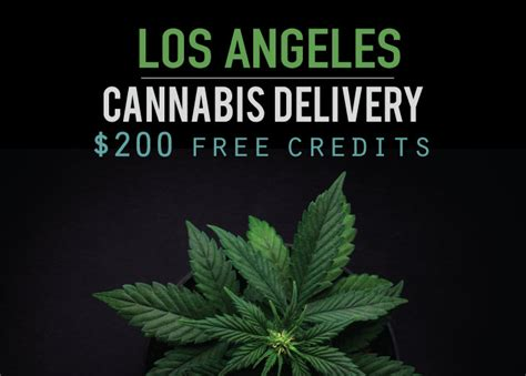 Cash For Gift Cards Los Angeles - cannabis delivery los angeles get over 200 in free cannabis credits