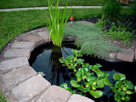 Simple Garden Pond Ideas Beautiful Garden Pond Ideas Orchidlagoon