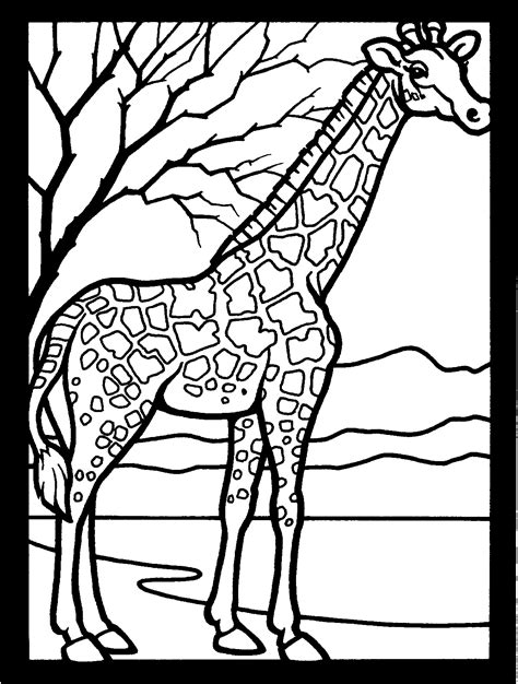 Free Printable Giraffe Coloring Pages For Kids Pictures To Print For