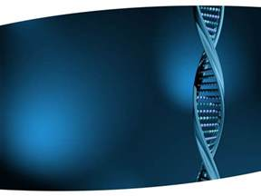 Dna Powerpoint Templates dna structure powerpoint template ppt backgrounds on dna strand slideworld
