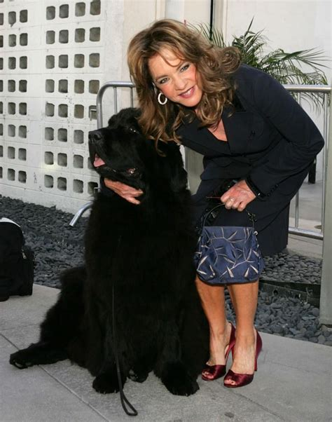 must dogs stockard channing pictures and photos fandango